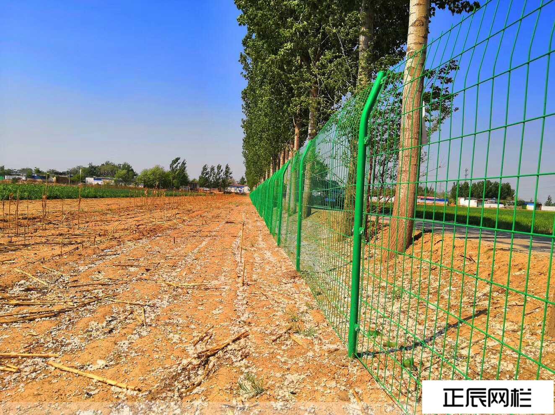 果园护栏网怎么卖的,多少钱一米
