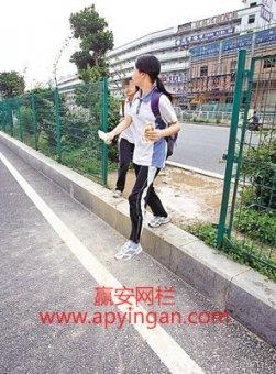从中国式过马路到中国式钻网横穿马路