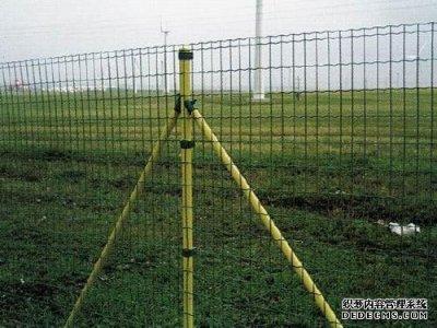 养殖农场专用护栏网-荷兰网