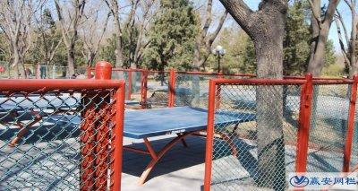 兵乓球场地隔离网的选择和使用
