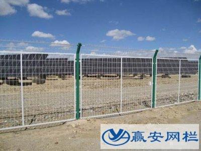 铁丝网围栏都是绿色的吗