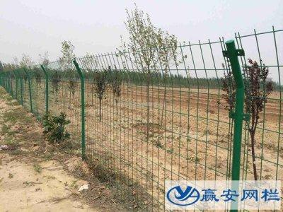果园围栏网的常见规格和作用