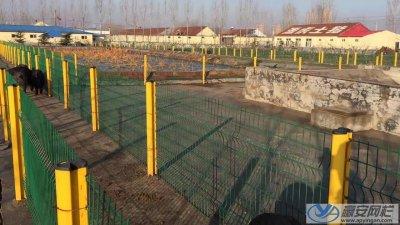 养殖场养猪场护栏网的选购和使用