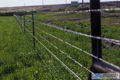 草原牛栏网