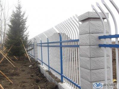山东泰安公园安装锌钢护栏