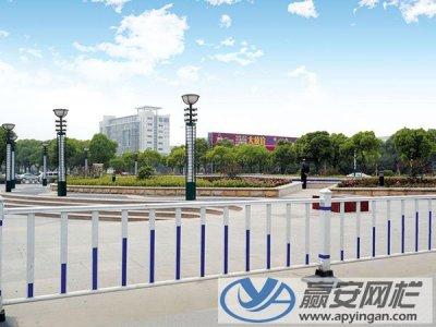 城市道路护栏安装施工案例