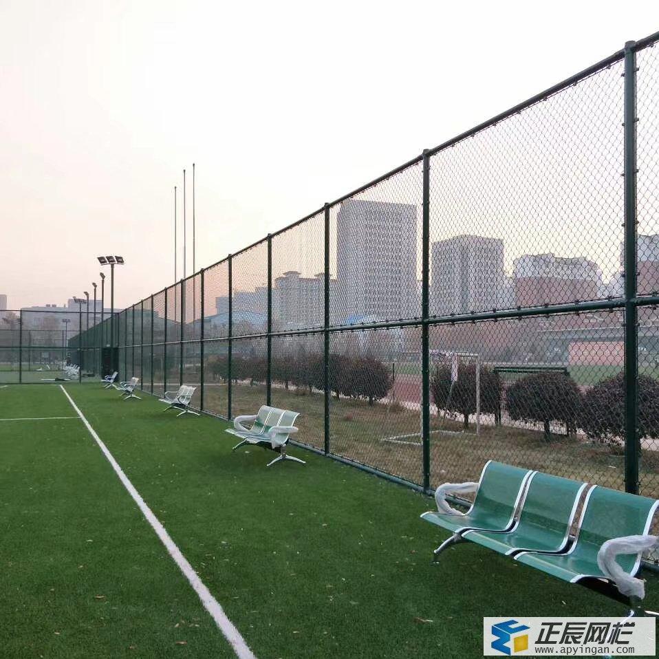 篮球场围网3