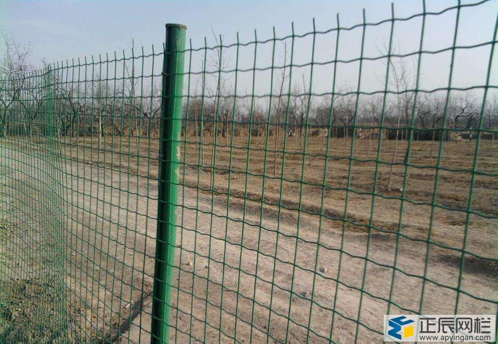 围地护栏网