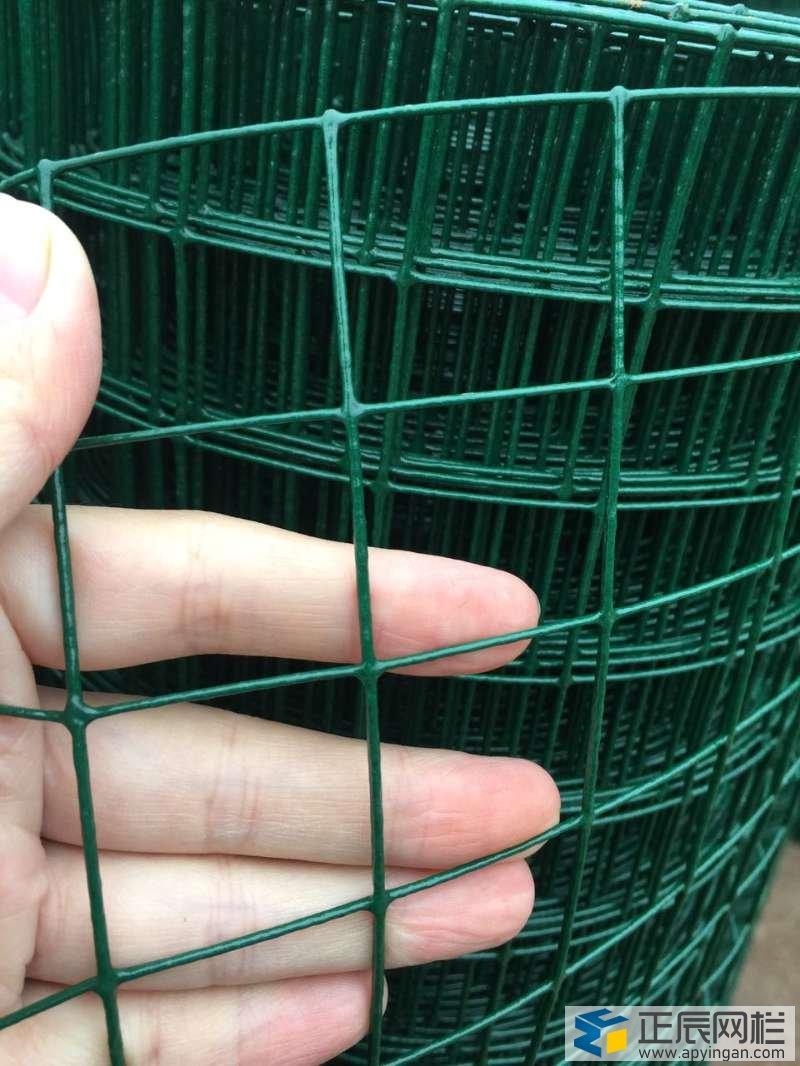鸡舍围栏网