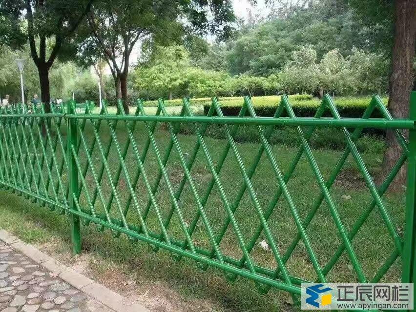 绿色隔离网