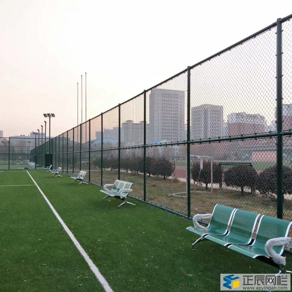 蓝球球场围网标准