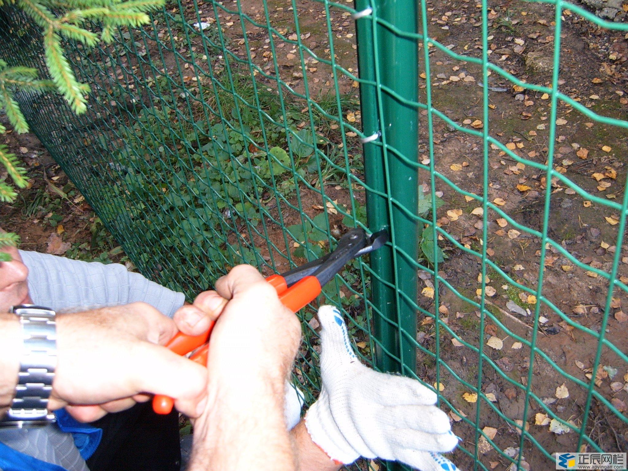 养殖场围栏网安装