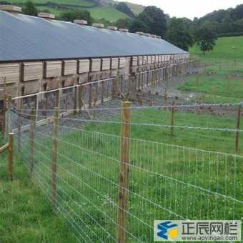 养殖铁丝网多少钱一米?