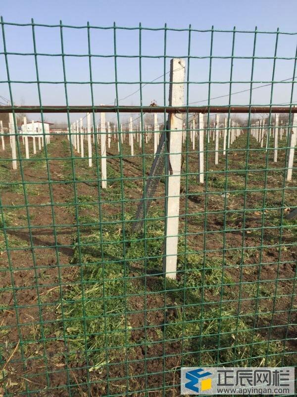 农场和果园围栏网