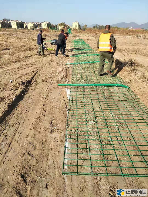 铁丝护栏网的施工方案