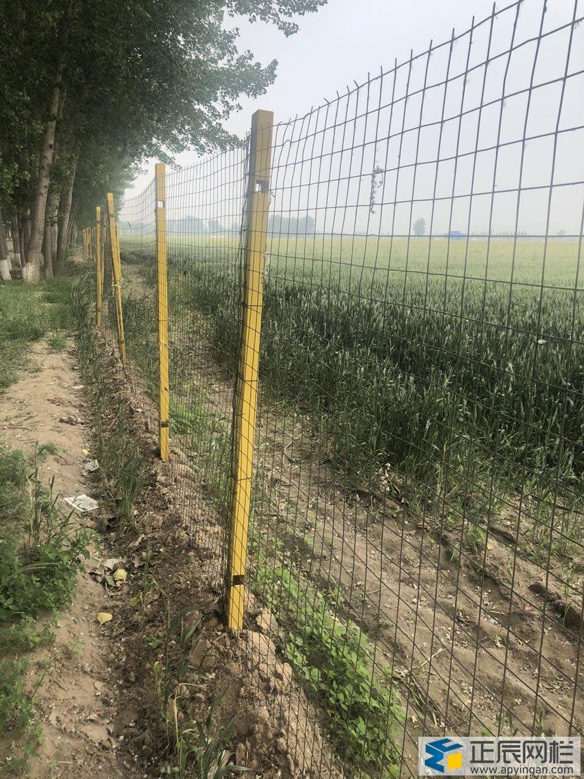 护栏网与玻璃钢立柱的的结合