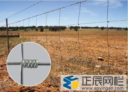 铁丝网围栏防护栏图34